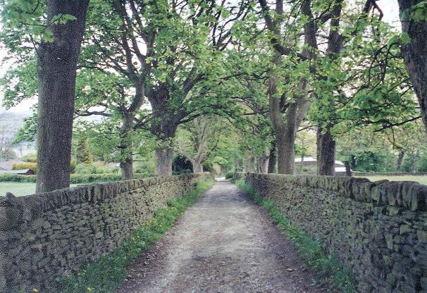Moor walk