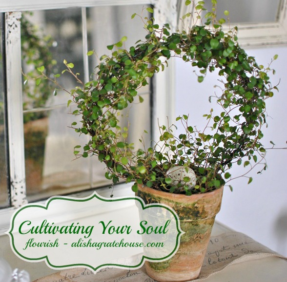 cultivating your soul