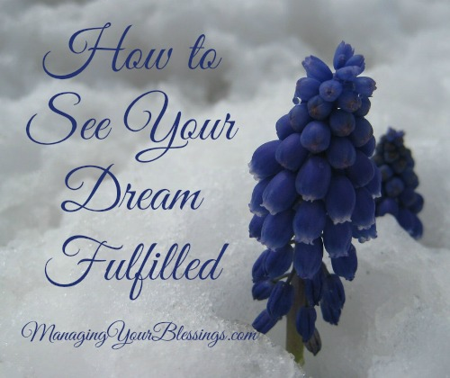 how to see your dream fulfilled 1