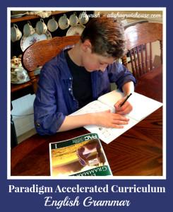 paradigm accelerated curriculum - english grammar  flourish  alishagratehouse.com