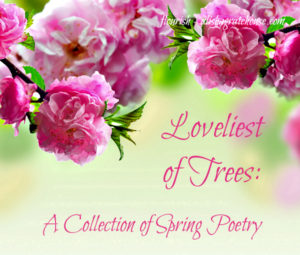 Loveliest of Trees: A Collection of Spring Poetry