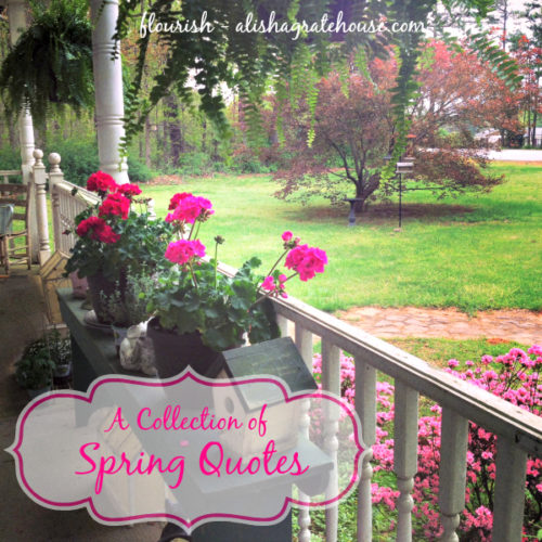 A Collection of Spring Quotes