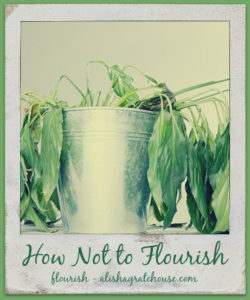 how not to flourish
