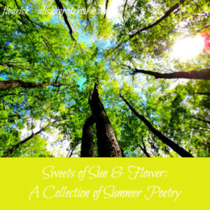 Sweets of Sun and Flower: A Collection of Summer Poetry
