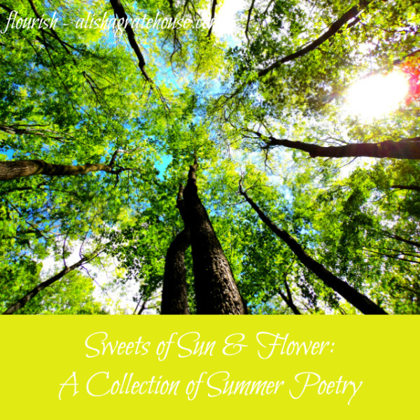 collection of summer poetry