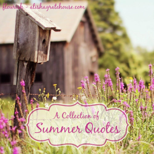 A Collection of Summer Quotes
