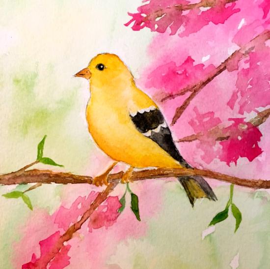 goldfinch - 600
