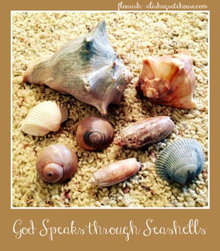 God Speaks through Seashells